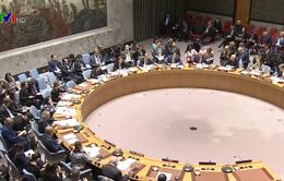 Hội đồng Bảo an thông qua nghị quyết về Syria
