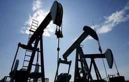 OPEC+ cam kết không tăng giá dầu