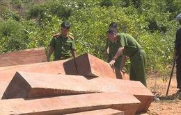 Đăk Lăk: Bắt tạm giam 4 cán bộ liên quan vụ phá rừng quy mô lớn ở huyện Ea Kar