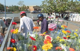 Làng hoa Sa Đéc tấp nập mua bán hoa, kiểng dịp Tết