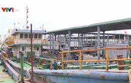 Tàu cá đóng mới theo Nghị định 67 không mua được bảo hiểm