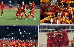 Năm 2019 - Năm huy hoàng của bóng đá Việt