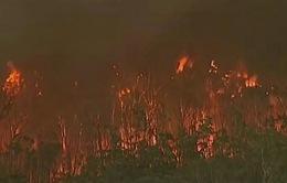 Ngành du lịch của Australia có khả năng thiệt hại tới 680 triệu USD do cháy rừng