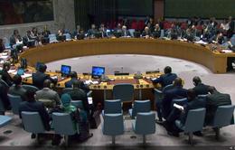 HĐBA LHQ yêu cầu Thỏa thuận An-giê cần được thúc đẩy triển khai mạnh mẽ