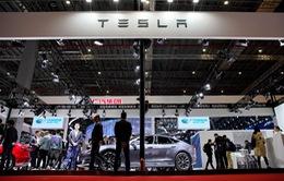 Cổ phiếu Tesla tăng không ngừng nghỉ