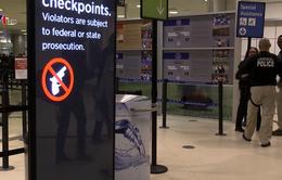 Mỹ phát hiện lượng súng kỷ lục tại các sân bay
