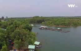 Khám phá đời sống trên hồ Trị An, Đồng Nai