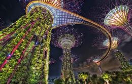 5 điểm ngắm pháo hoa ai cũng muốn đến dịp Tết Nguyên đán Canh Tý 2020