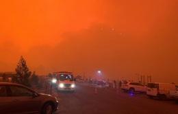 Australia: Cháy rừng dữ dội áp sát nhà dân, hàng nghìn người phải trú ở bờ biển