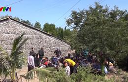 Triệt phá tụ điểm đá gà ăn tiền tại Cà Mau, bắt giữ 54 đối tượng
