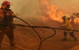 Gia tăng số người thiệt mạng do cháy rừng ở Australia