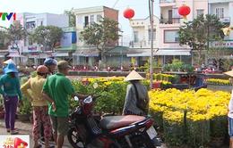Người dân Cần Thơ không chờ đến 30 Tết để mua hoa