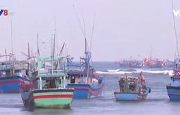 Ngư dân câu cá ngừ đại dương ăn Tết trên biển