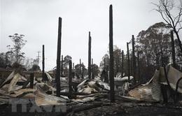 Nguy cơ cháy rừng bùng phát trở lại tại Australia