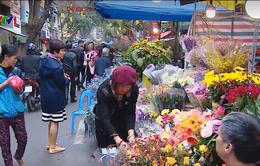 Cảm nhận không khí Tết tại phiên chợ hoa Hà Nội ngày cuối năm