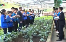 Thừa Thiên - Huế đặt mục tiêu xuất khẩu 10.000 lao động