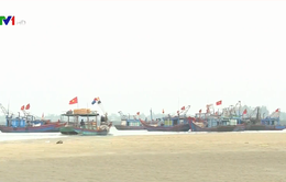 Ngư dân Hà Tĩnh bám biển ngày Tết