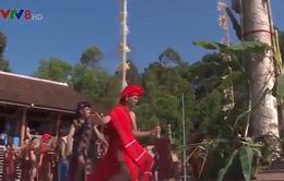 Lễ mừng lúa mới - di sản văn hóa phi vật thể quốc gia