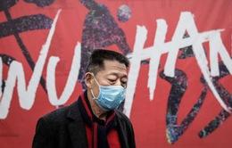Nhiều công ty áp dụng biện pháp bảo vệ nhân viên khỏi dịch viêm phổi