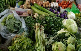 Nguồn thực phẩm đủ cung cấp, không có hiện tượng thiếu hàng và sốt giá