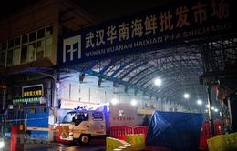 Chợ hải sản Vũ Hán có thể không phải là nguồn gây bệnh duy nhất