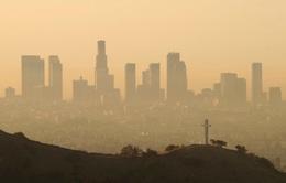 30% dân Mỹ sống chung với không khí ô nhiễm