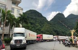 Hướng dẫn kiểm dịch y tế đối với người điều khiển và phương tiện vận tải