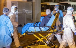 Hai ca nhiễm virus corona tại Australia được xuất viện
