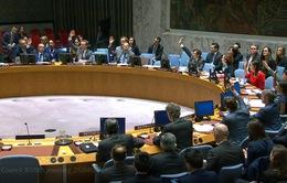 Thông qua Nghị quyết về gia hạn hoạt động của Phái bộ LHQ tại Cyprus và Libya