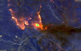 Australia dành 2 tỷ AUD khắc phục hậu quả cháy rừng