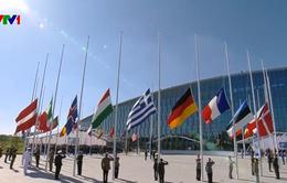 NATO họp khẩn về căng thẳng Mỹ - Iran