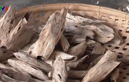Nhộn nhịp vụ sản xuất Tết tại làng nghề trầm hương