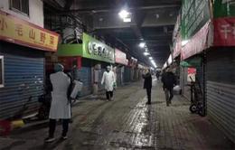 Gia tăng số ca viêm phổi lạ ở Trung Quốc