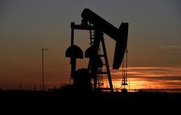 Tác động từ căng thẳng Mỹ - Iran lên thị trường dầu mỏ