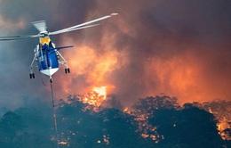 IBM hỗ trợ 1 triệu đô la Australia để khắc phục hậu quả thảm họa cháy rừng