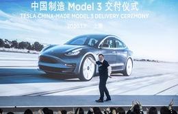 Cổ phiếu của Tesla đang giao dịch gần mức cao kỷ lục
