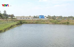Chủ động thực hiện các giải pháp bảo vệ nguồn nước ngọt