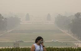 Nguy cơ các bệnh hô hấp bùng phát tại Australia do khói mù