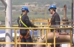 Diễn biến trên thị trường dầu khi căng thẳng Mỹ - Iran tăng nhiệt
