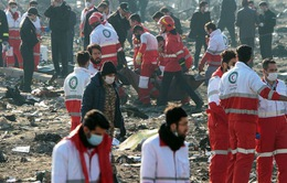 Ukraine - Iran hợp tác điều tra vụ rơi máy bay làm 176 người thiệt mạng