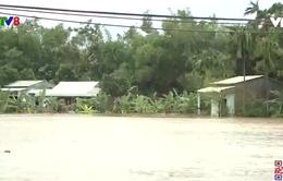 Quảng Nam lũ bắt đầu dâng cao