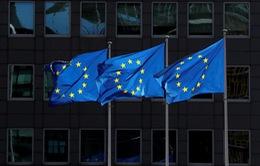 """EU lên danh sách kiểm soát các """"ông lớn"""" công nghệ"""