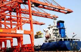 [INFOGRAPHIC] WTO hạ dự báo suy giảm thương mại toàn cầu năm 2020