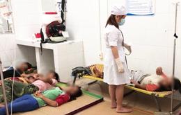 Hái nấm rừng về ăn, 7 người trong một gia đình nhập viện