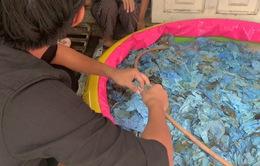 Xưởng giặt tẩy găng tay y tế đã sử dụng bằng... xà phòng và thuốc tẩy