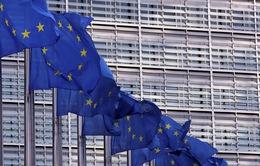 EU giành quyền áp thuế đối với 4 tỷ USD hàng hóa của Mỹ