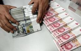 Đồng NDT sẽ tiếp tục tăng giá so với USD