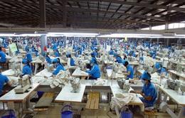 EVFTA - Động lực cho xuất khẩu tiếp tục tăng trưởng