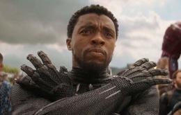 """""""Black Panther 2 sẽ rất kì lạ khi không có Chadwick Boseman"""""""