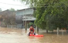 Quân đội, công an dầm mình trong mưa lũ cứu dân